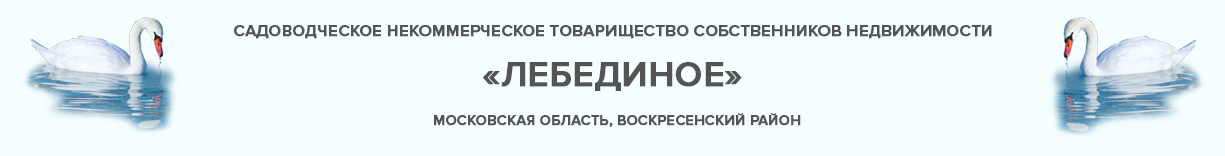 СНТСН Лебединое